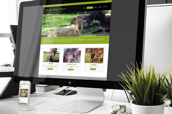 Website Design Haywards Heath
